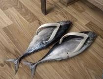fish-sandals